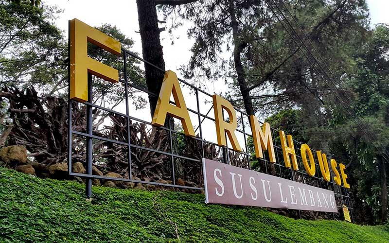 Farmhouse Lembang Wisata Murah Ala Eropa